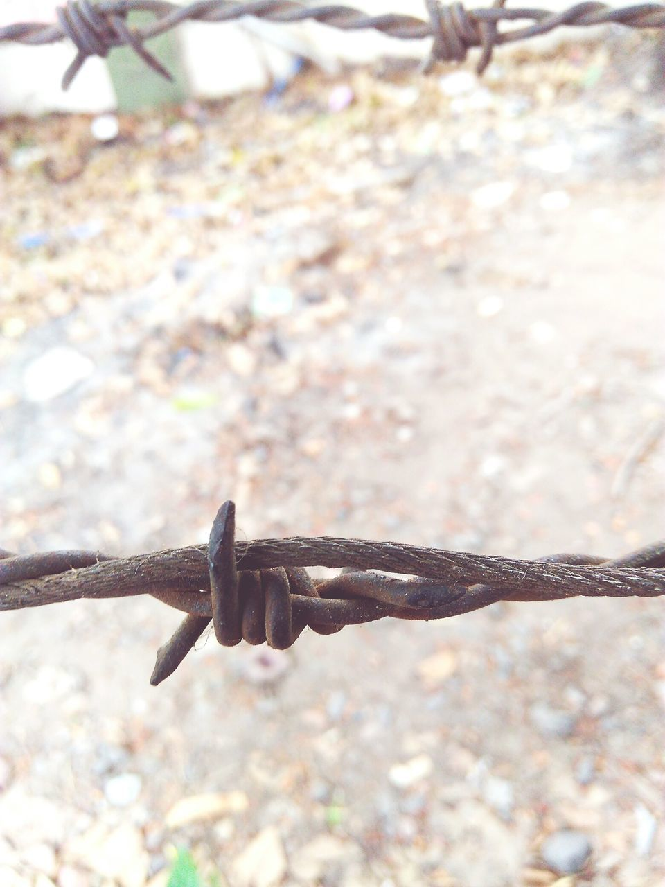 metal, strength, day, safety, focus on foreground, close-up, protection, outdoors, barbed wire, no people, sunlight, rusty