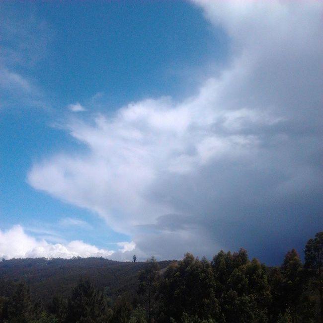 50/50! Foi assim o tempo de hoje: metade sol, metade escuro, chuva e vento. Só na serrinha! Clouds Rain Sun Landscape Paisagem Chuva Sol Vento