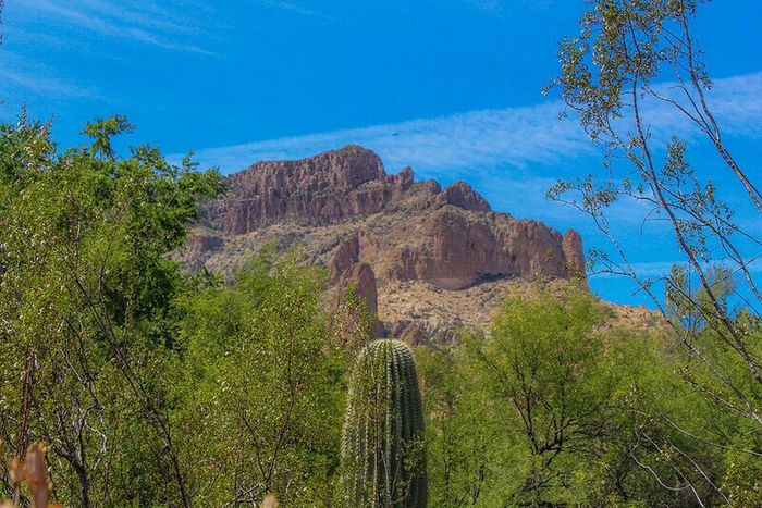 Mountains Desert Deserted Scapes Landscape Landscape_Collection Cactus Streamzoofamily Ladyphotographerofthemonth Check This Out Outdoors❤