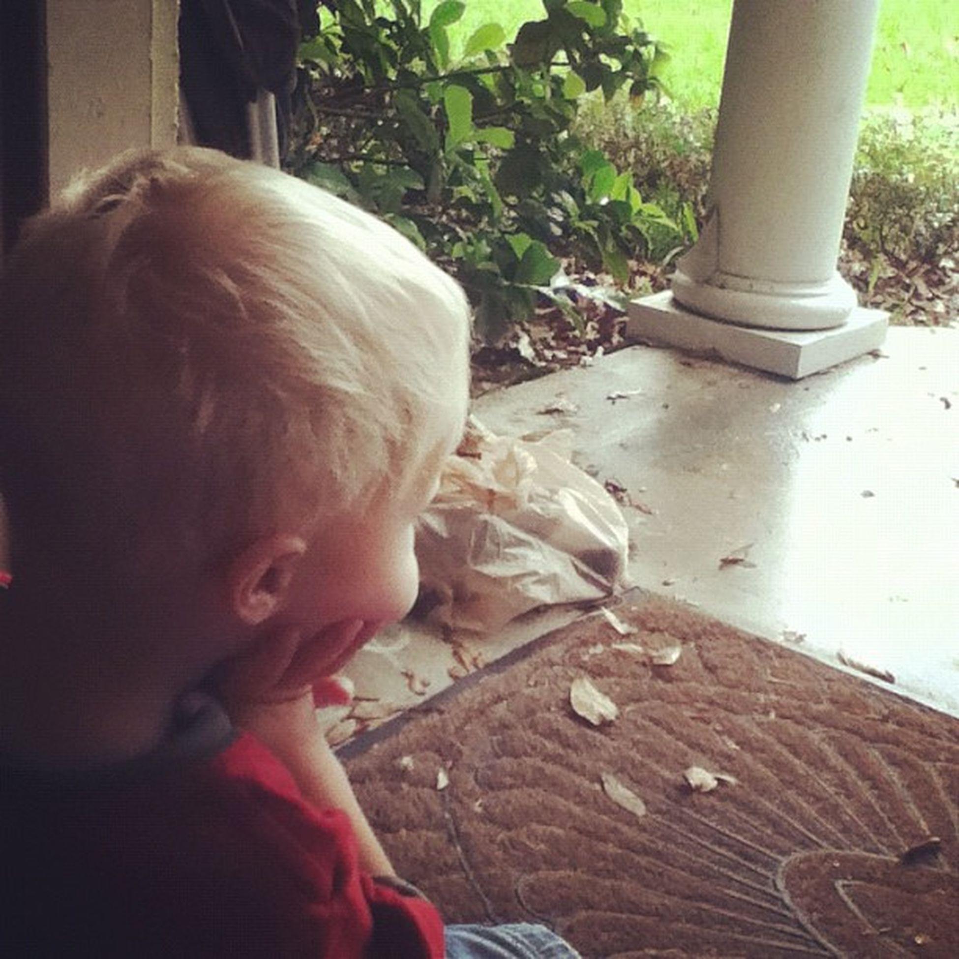 Daven!!! My little cousin 4 of 4! Ahaha it's raining outside... Daven Raining Sitting in the doorway like a boss! Ahaha!