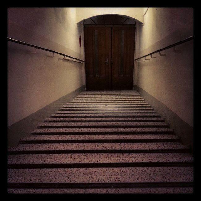 #stairway #stairs #oldcityhall #wienerneustadt #austria #door Door Stairs Stairway Austria Wienerneustadt Oldcityhall