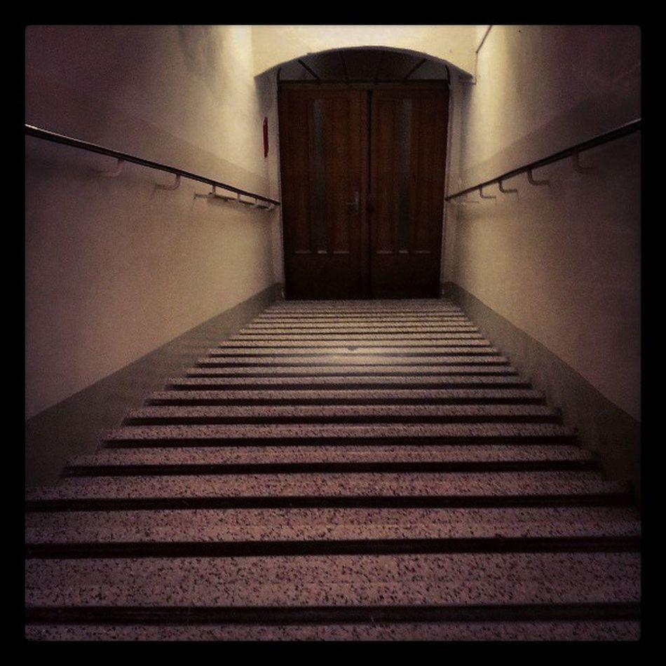 Stairway Stairs Oldcityhall Wienerneustadt austria door