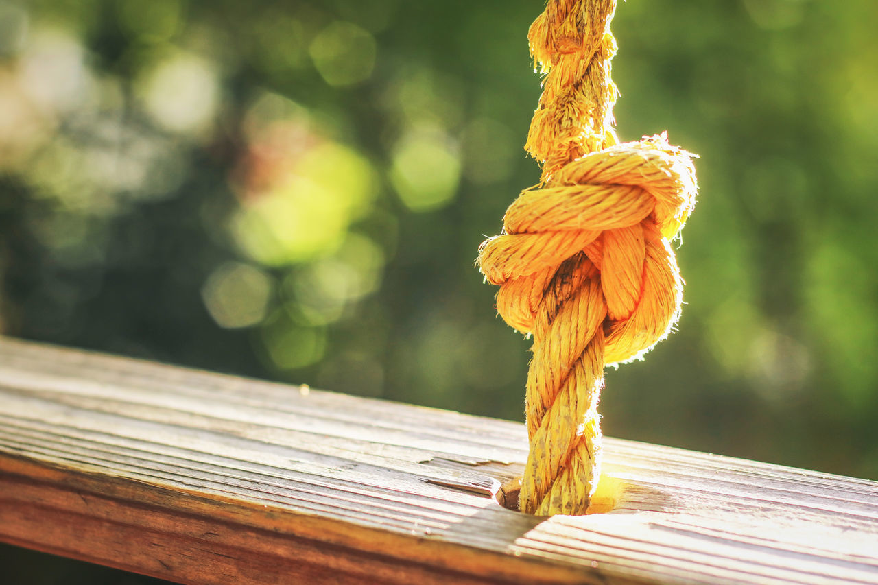 Yellow rope Bokeh Close-up Day Focus On Foreground Nature Outdoors Rope Wood - Material Yellow