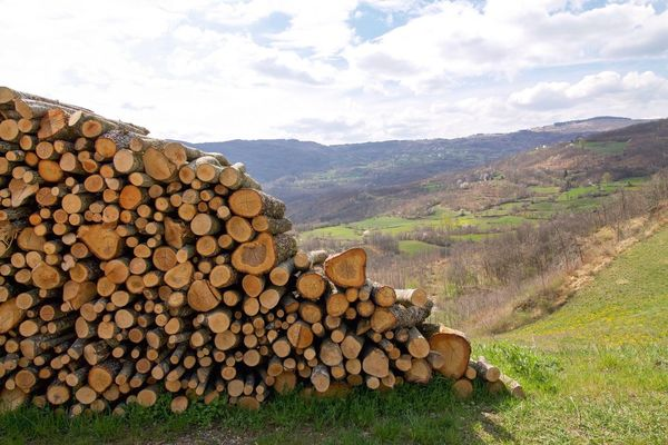 Stack Firewood Log Woodpile Timber Heap Forestry Industry Large Group Of Objects Mountain Wood - Material Deforestation Shape Abundance Landscape Lumber Industry Mountain Range Pile Day No People Nature EyeEm Nature Lover Panorama Hills Trunk Tree Cut