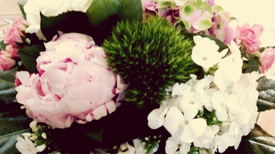 Flowers Present