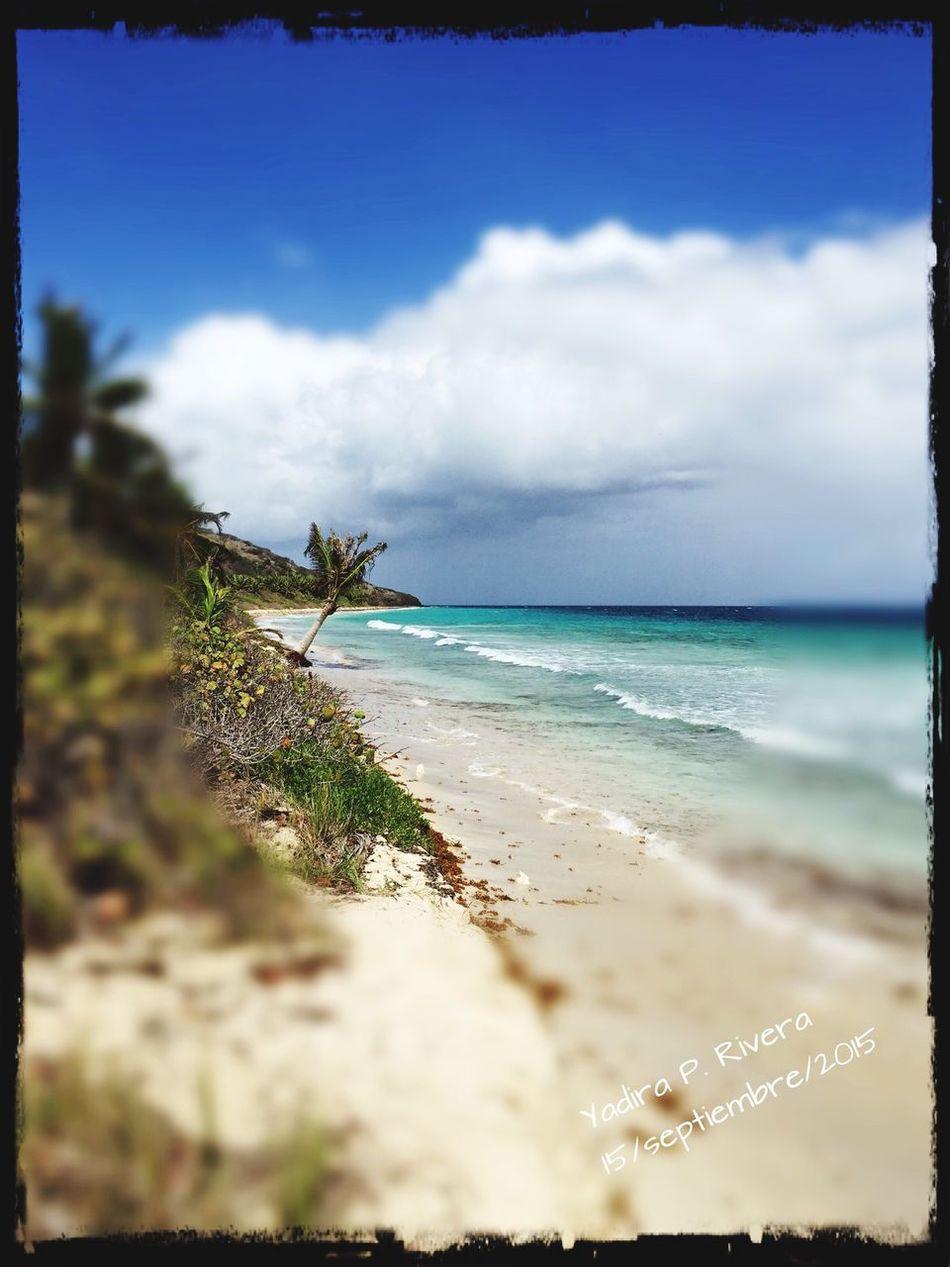 Pauletta's Isla Culebra