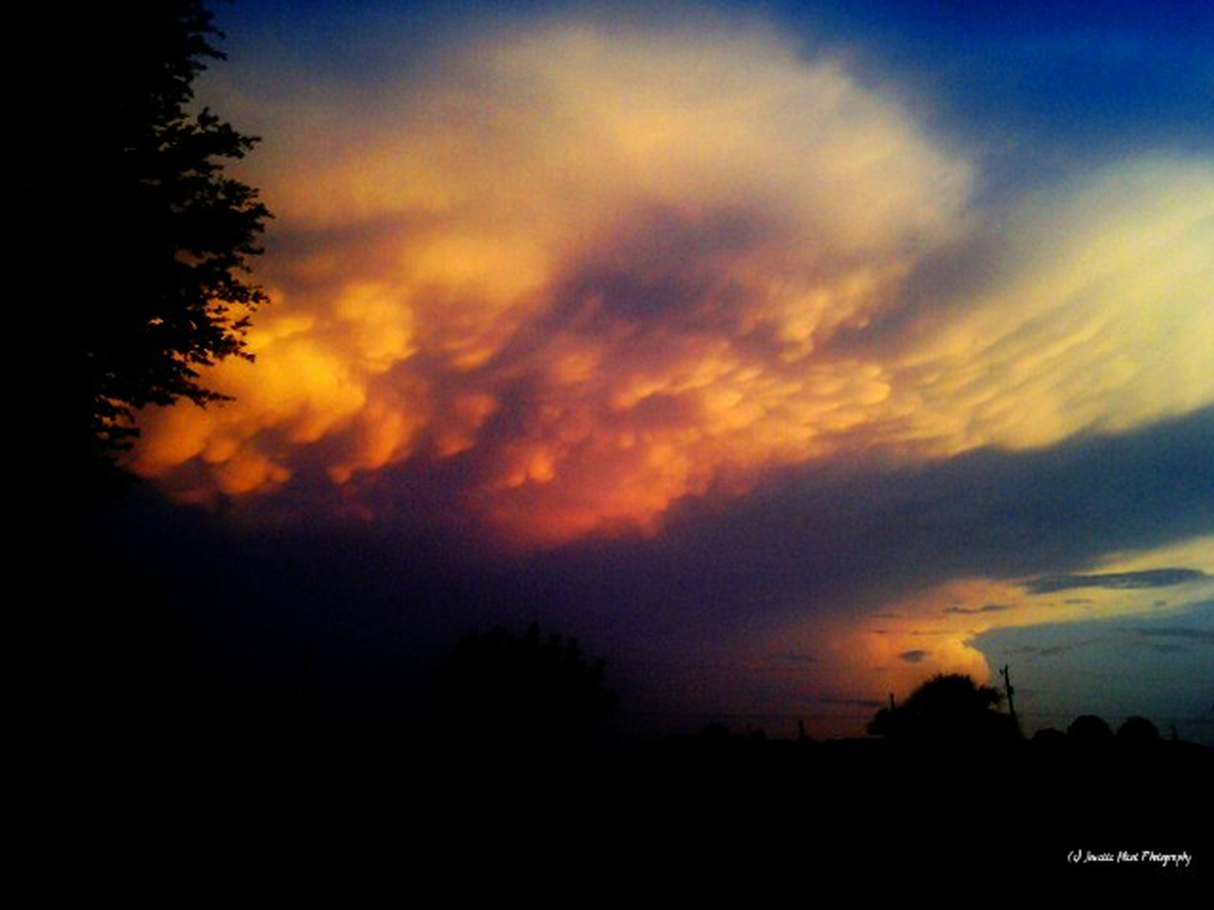 silhouette, sunset, sky, scenics, tree, beauty in nature, tranquility, tranquil scene, cloud - sky, orange color, nature, dramatic sky, dark, idyllic, cloud, landscape, dusk, moody sky, outline, cloudy