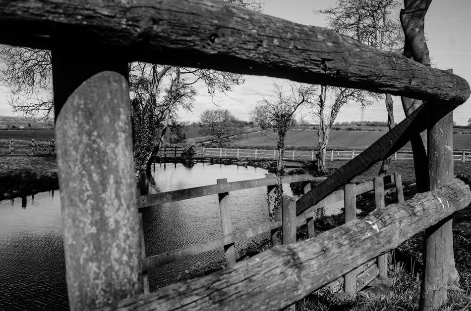 The view from a friend's garden... this lake, the trees and the fences so define the English countryside. Black and white photos, in the otherwise very similar countryside, makes these stand out because of the textures and lines that get highlighted by taking away the colours. Black And White Black And White Landscape Black And White Scenery Bridge - Man Made Structure Calm Country Countryside Day English Countryside Geometry Lake Nature Nature No People Outdoors Reflection Relaxing Rural Sky Soothing Steps Tree Water WoodLand Woods