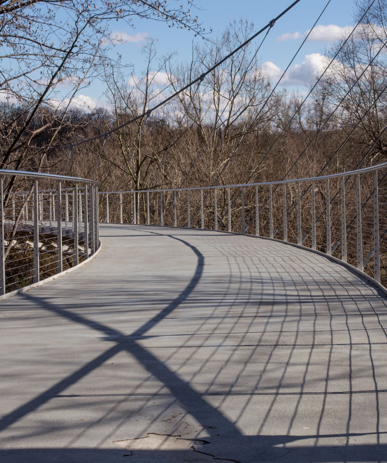 Empty The Way Forward Surface Level Suspension Bridge Bridge Liberty Bridge Yeahthatgreenville Falls Park Fallspark GreenvilleSC Greenville, SC Bare Tree Railing Shadow Tranquil Scene Footbridge Myportfolio Nikon D3200 EyeEm Best Shots EyeEm Gallery Cityscapes