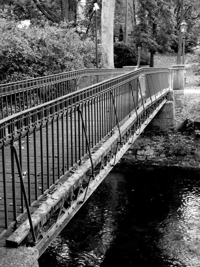 Monochrome Photography Baden Baden Germany