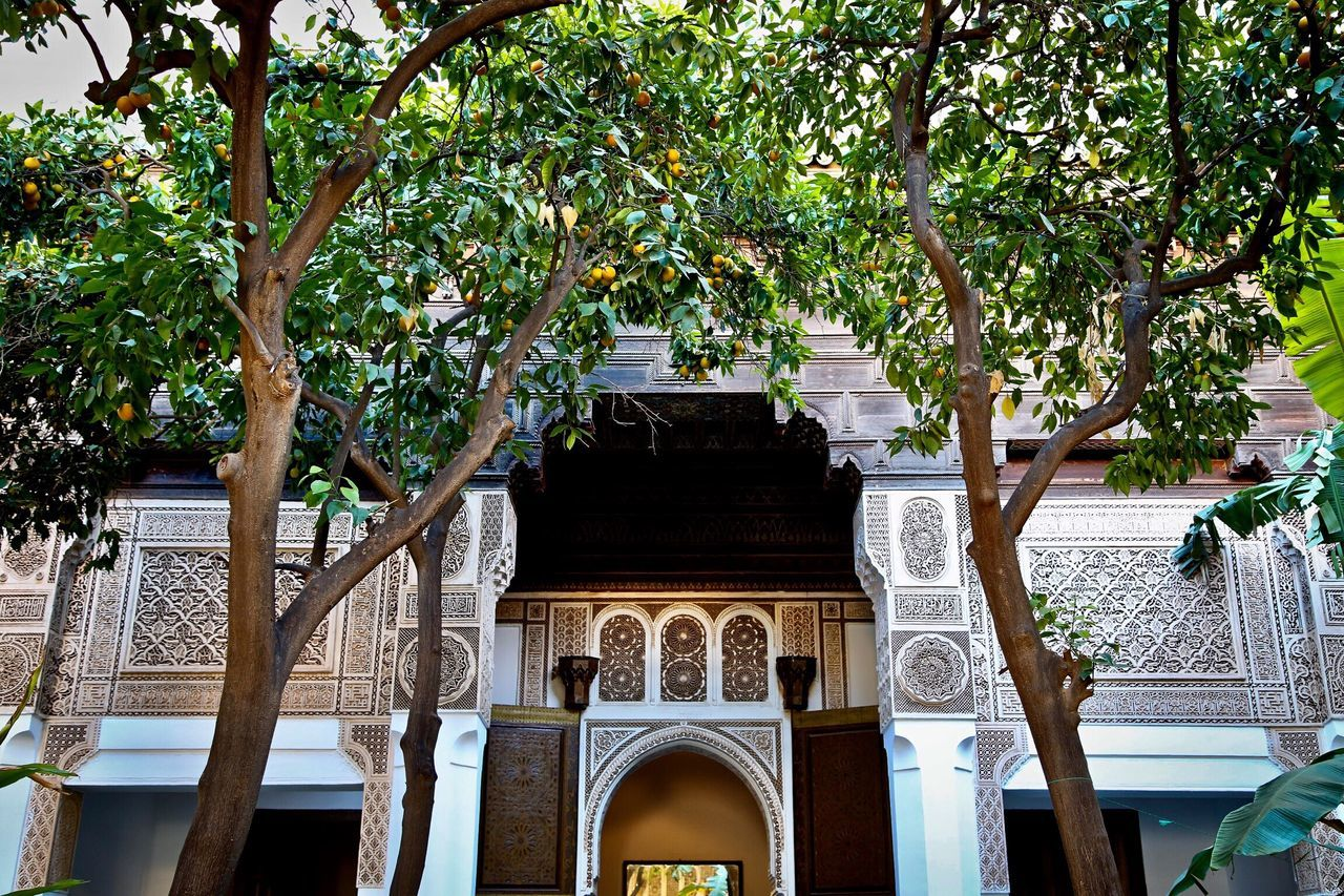 Orange Tree Morocco Architecture Architecture_collection Beauty In Nature Beautiful Traveling Travel Colors Green Color Canonphotography
