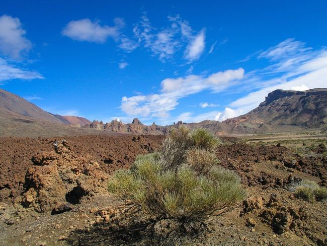 Landscape Tranquil Scene Tranquility Mountain Scenics Remote Non-urban Scene Physical Geography Sky Geology Nature Tenerife Tenerife Island Teneriffa Desert Plant Solitude Arid Climate Nature Beauty In Nature Rock - Object Countryside Mountain Range