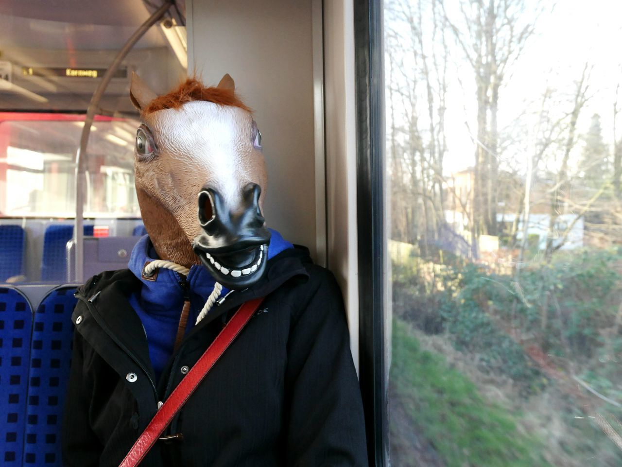Man Wearing Horse Mask In Train