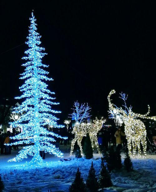 Tree Decoration Winter Illuminated Christmas Lights Night Snow Lights Reindeers Lightart