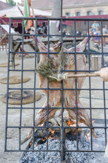 Roast lamb in renaissace, tortosa. Catalonia Grilling Holiday Meal Renaissance Tortosa Animals Barbecue Ember Grilled Meat Medieval Party