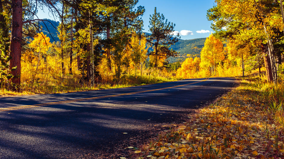 Autumn Colorado Empty Road Fall Colors Golden Gate Canyon State Park Morning Light Mountain Non-urban Scene Outdoors Road Scenics Season  September The Way Forward Tranquil Scene Travel Destinations Tree