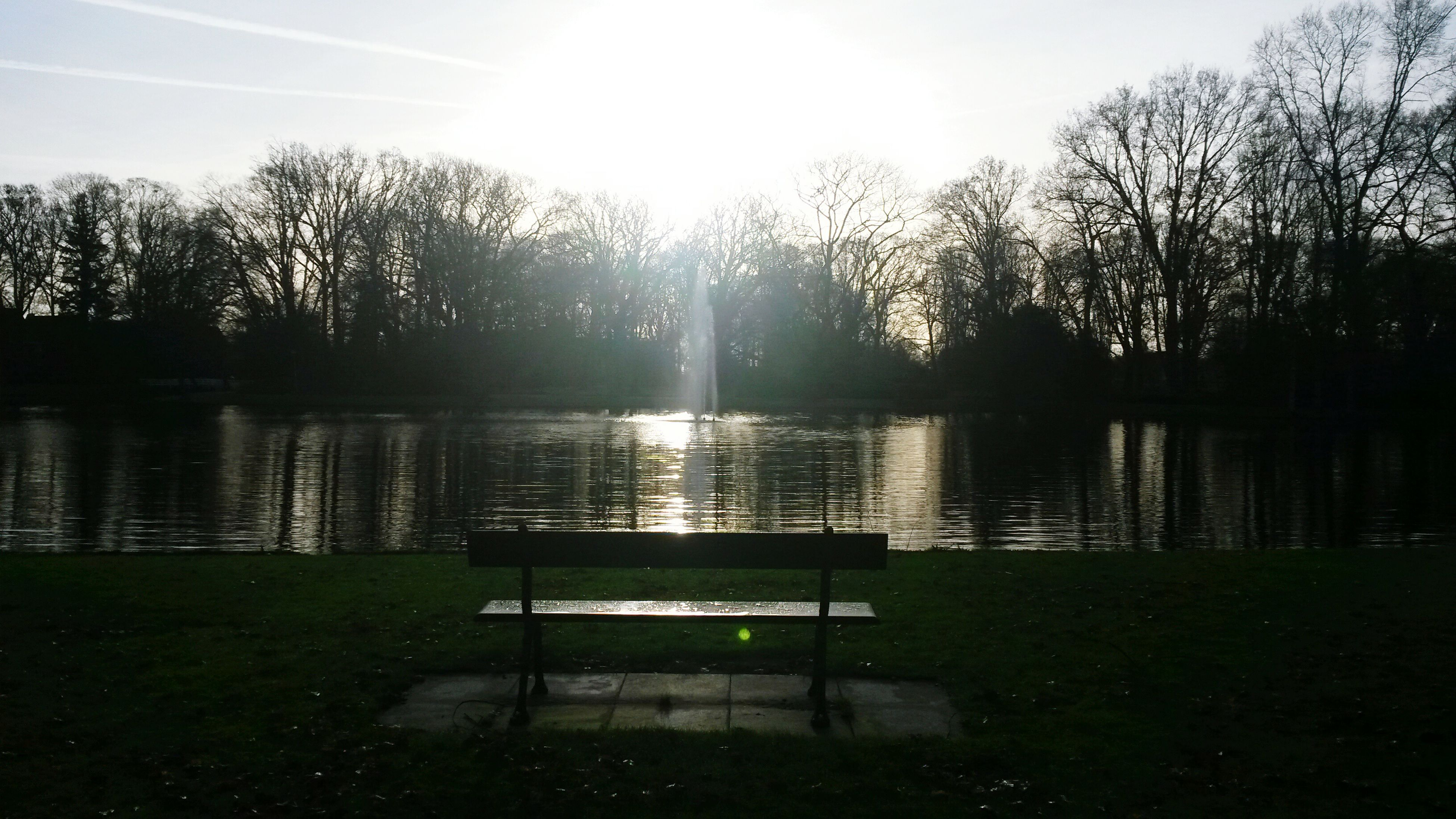 tree, water, tranquility, tranquil scene, bench, lake, scenics, beauty in nature, nature, sunlight, grass, sun, sky, empty, absence, park bench, idyllic, park - man made space, growth, reflection