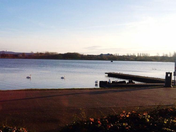 Beautiful morning to wake up to, water, sunshine, blue sky Hello World 😊☀️