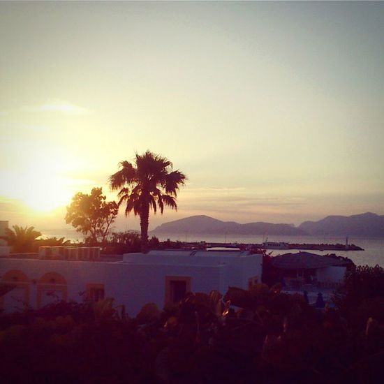 Sunrise Palm Beach Mediterranean Sea Lightandshadow Greece Kos Island Chill Out