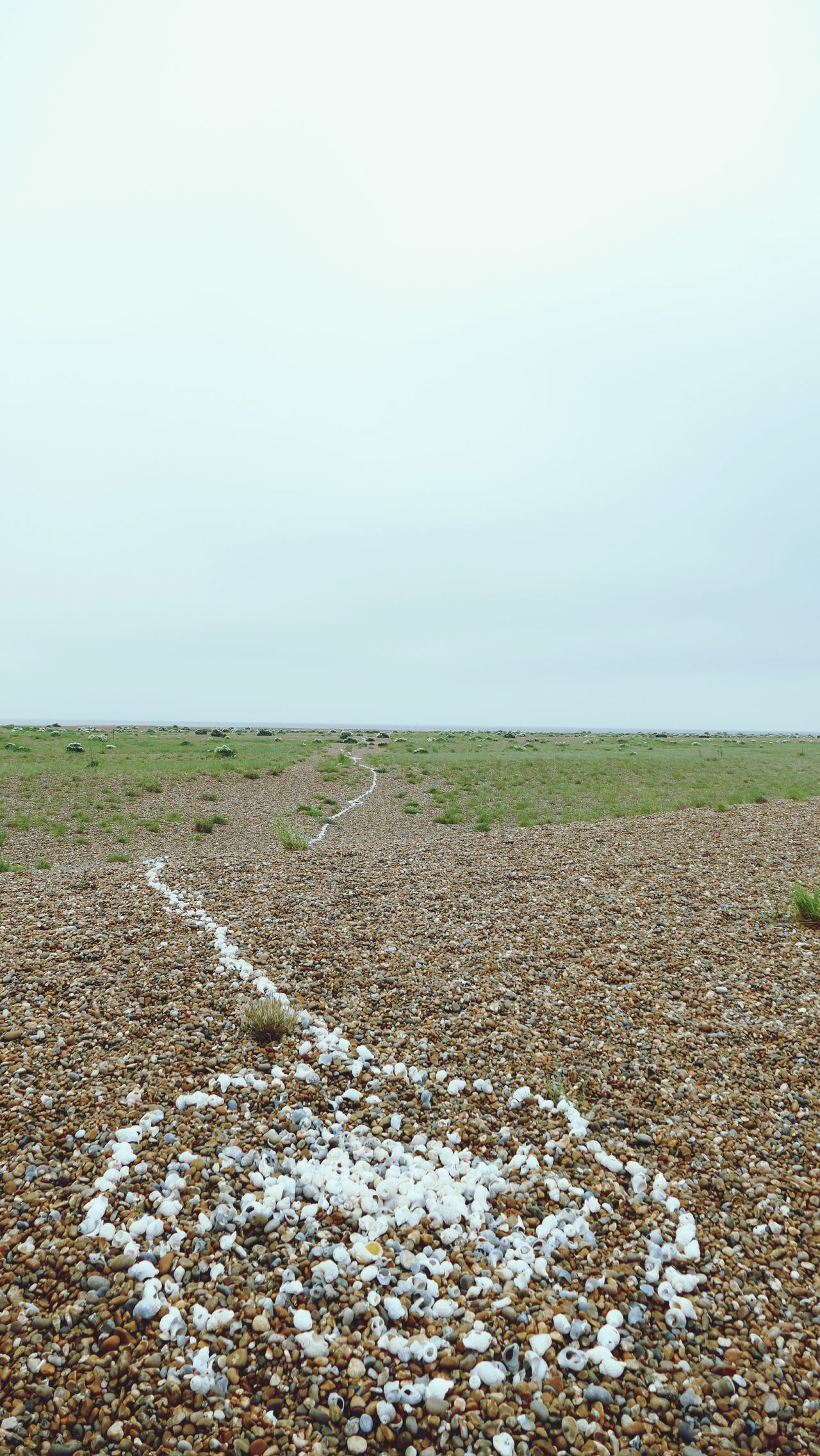 'Target' Art Beach Shingle Street Shingle Pebbles Stones Seaside Shore Trail Colour LINE -- B