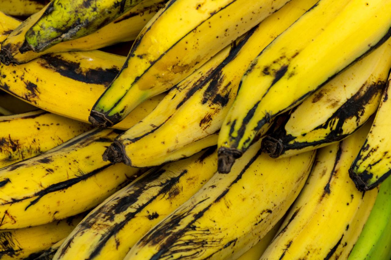 Banana Banana Bananas Close Up Close-up Day Food Food And Drink Fruit Healthy Eating Nature No People Outdoors Wellow Yellow
