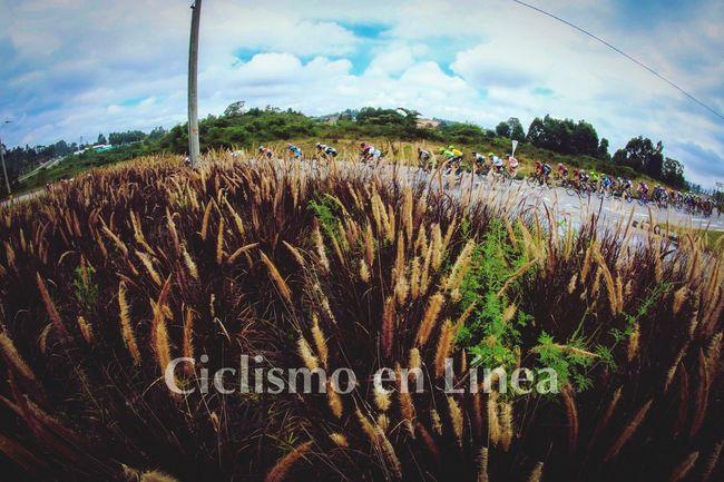 Clásica del Carmen de viboral 2016. Ciclismo Ciclista Cycling Cyclist Deporte Antioquia Ciclismo Di Una Volta Canonphotography