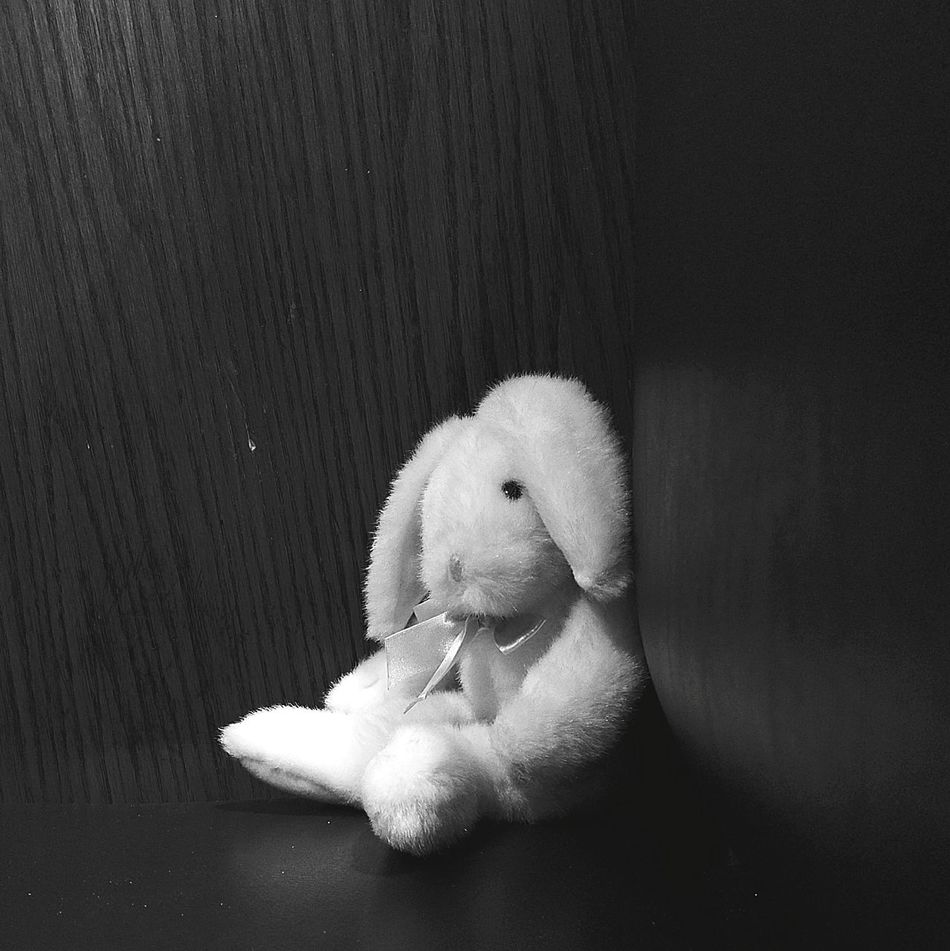 Lost Toy. Looking for new home. Indoors  No People Close-up Bunny  Bunny Love Rabbit Rabbit Ears Lost Stuffed Toy Stuffed Animals Stuffedtoy Blackandwhite Blackandwhite Photography