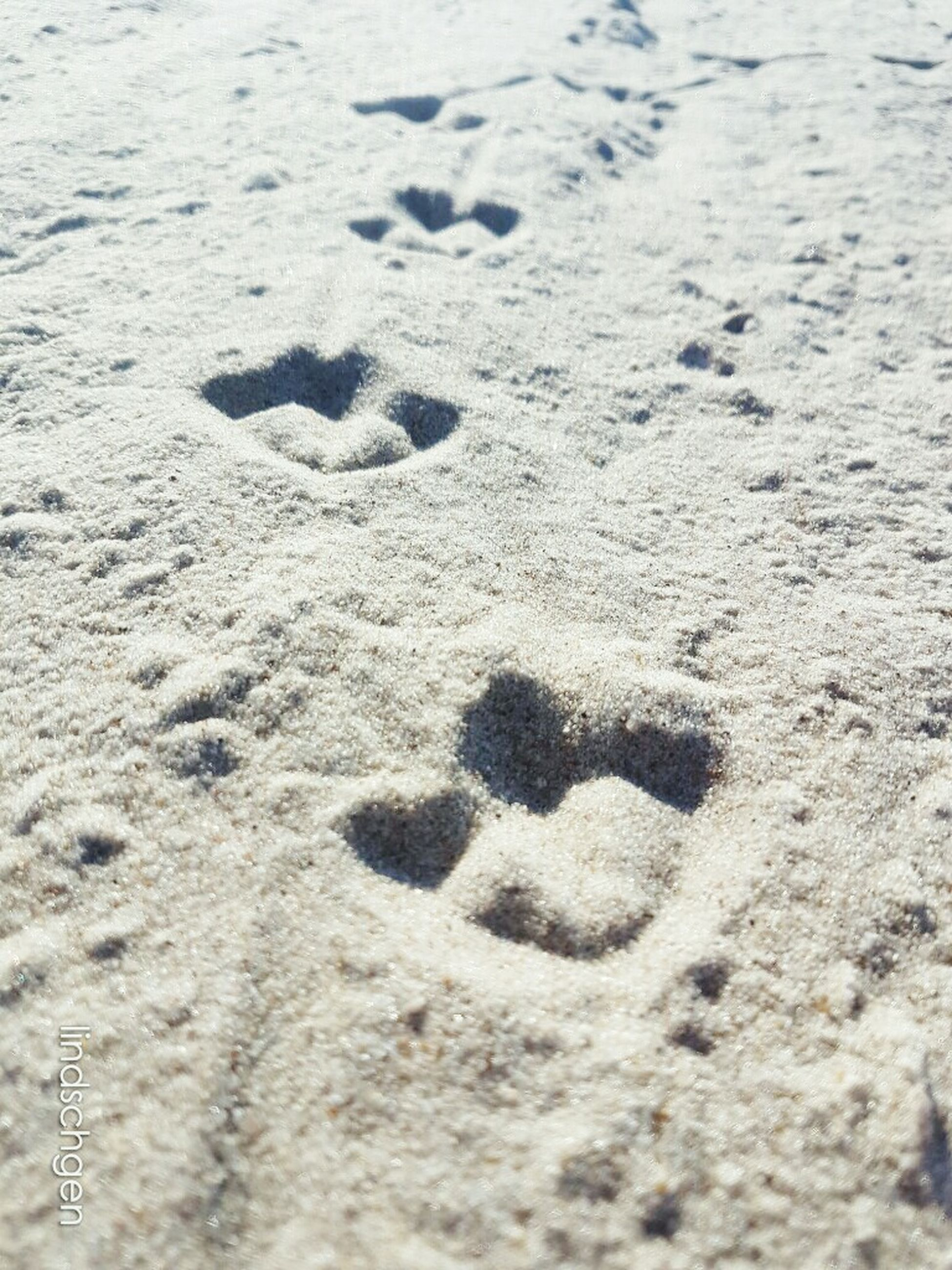 footprint, high angle view, mystery, beach, sand, identity, full frame, backgrounds, vacations, nature, outdoors, tourism, tranquility, non-urban scene, surface level, no people, wave pattern