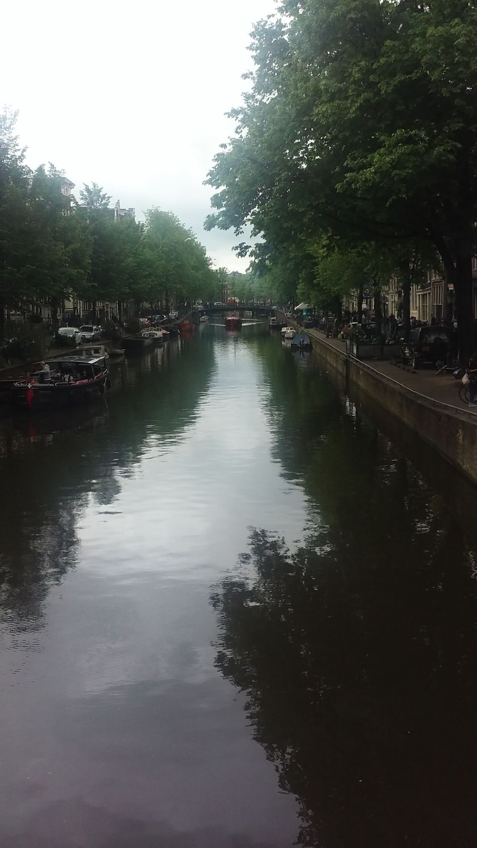 Amsterdam Reflection Water Tree Outdoors Sky Day Miles Away Channels