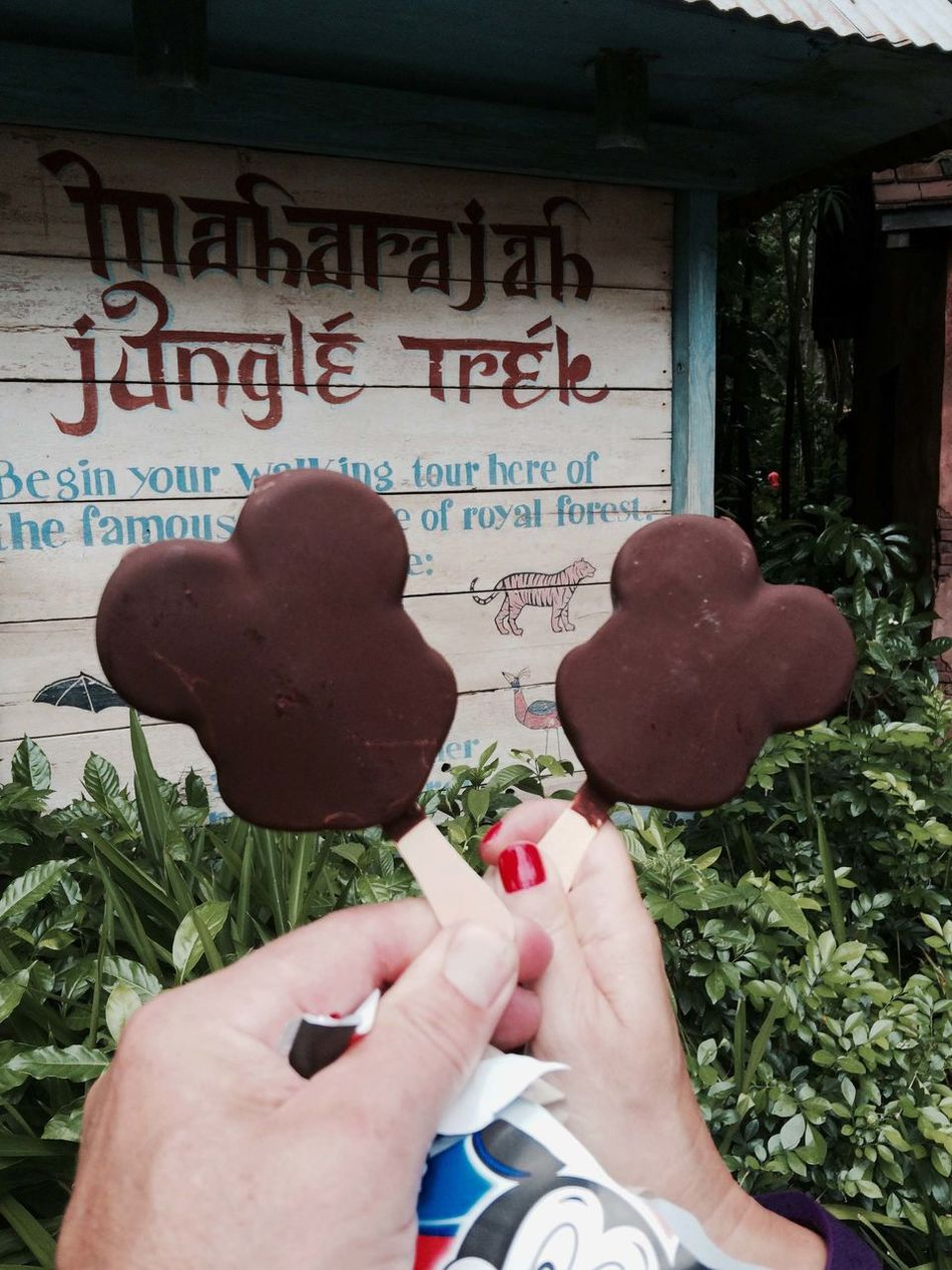 Disney Mickey Mouse Mickey Mouse Icecream! Disney World