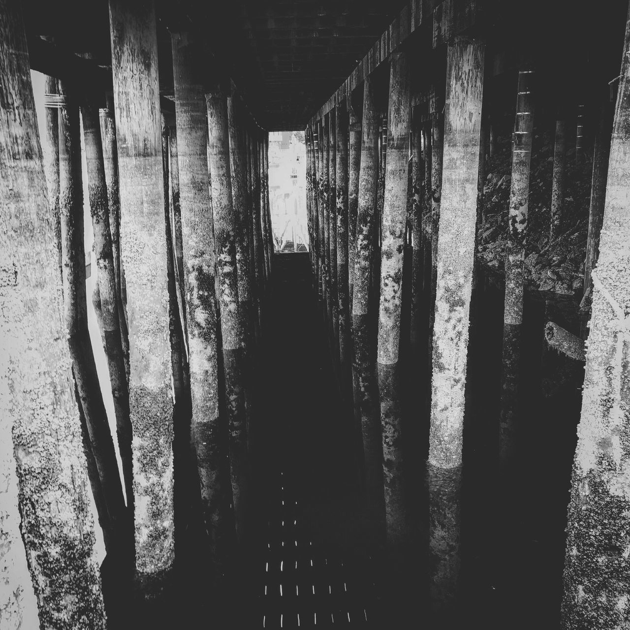 The depths of Granvilleisland