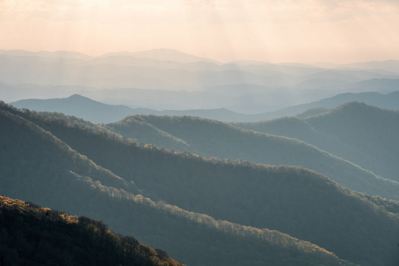Beauty In Nature Blue Ridge Mountains Craggy Gardens Day Fog Hazy  Idyllic Landscape Mountain Mountain Range Nature No People Outdoors Remote Scenics Sky Sunset Tranquil Scene Tranquility Tree