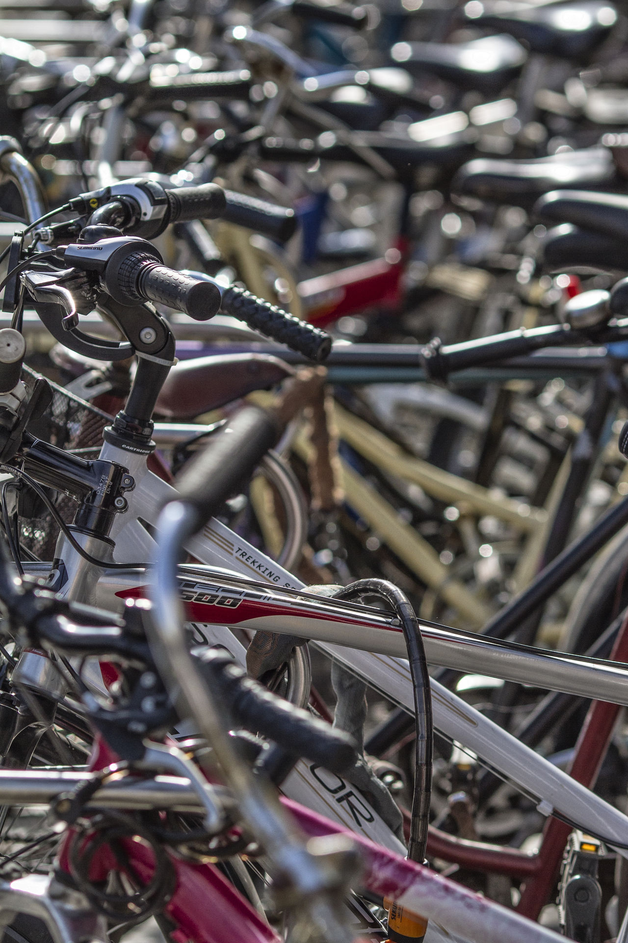 Bicycle Close-up Day Focus On Foreground Large Group Of Objects Metal Mode Of Transport No People Outdoors Stationary Transportation