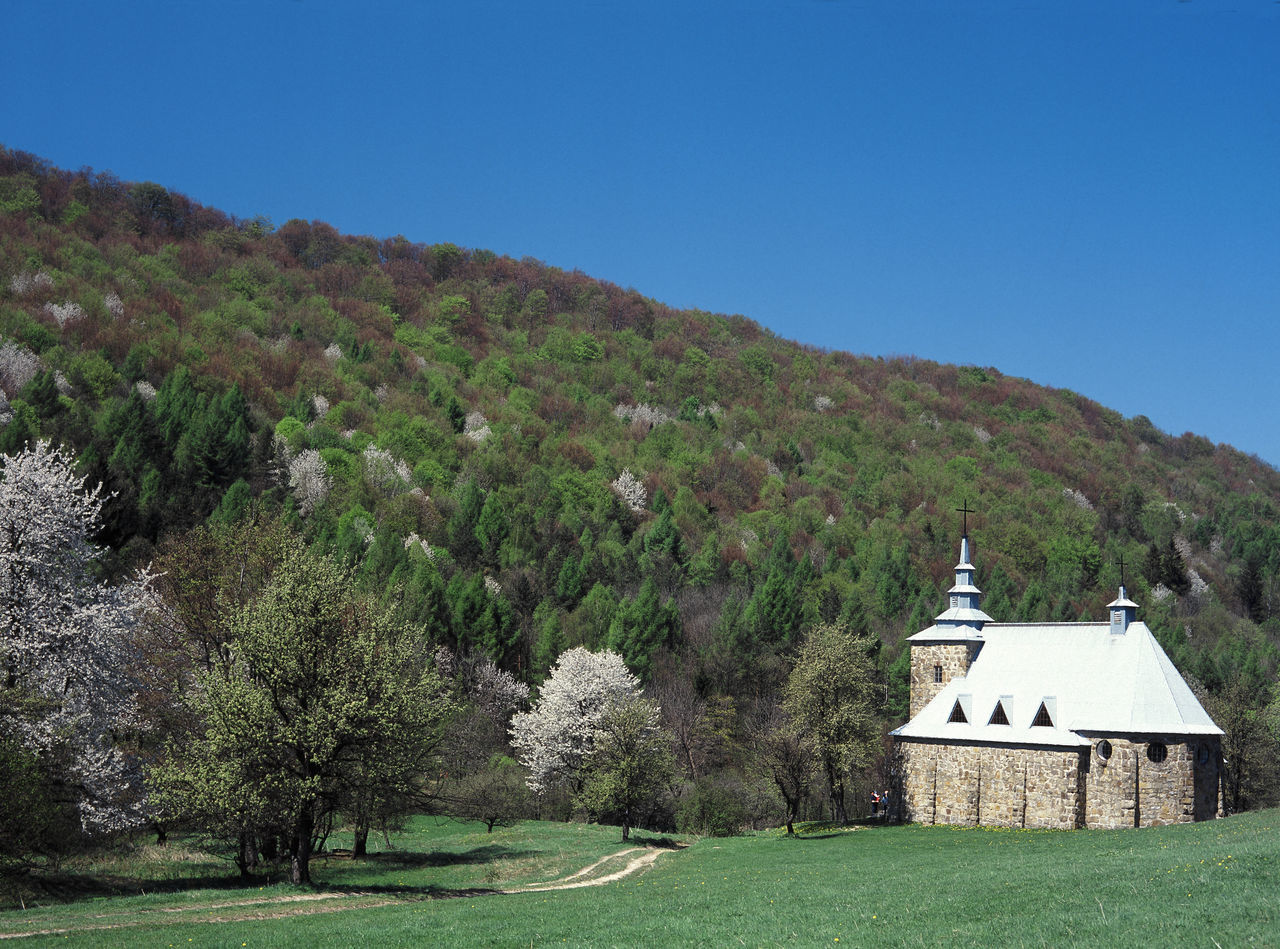 Beskid Niski Church Flowering Huta Polanska Huta Polanska Mountain Mountains Poland Polen Spring