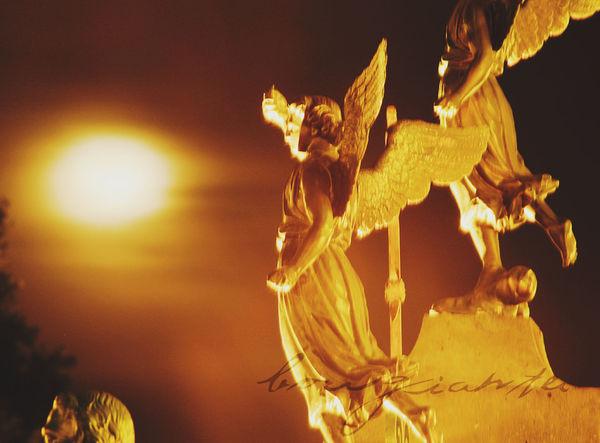 Angel Angels Borgiante Cathedral Cathedrals  Church Dark Darkness And Light Luna Moon Puebla