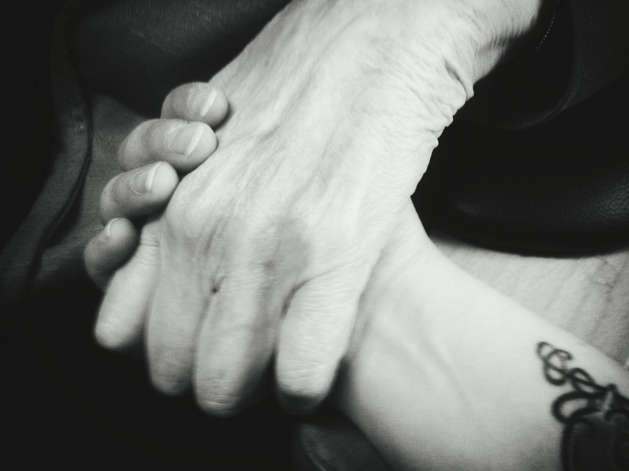 Beautiful stock photos of granny, Affectionate, Aging Process, Bonding, Close-Up
