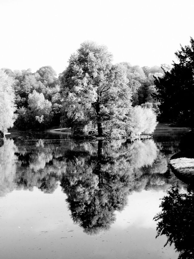 Beauty In Nature Calm Infra Red Lake Nature Reflection Reflection Lake Solitude Standing Water Symmetry Tranquil Scene Tranquility Tree Water