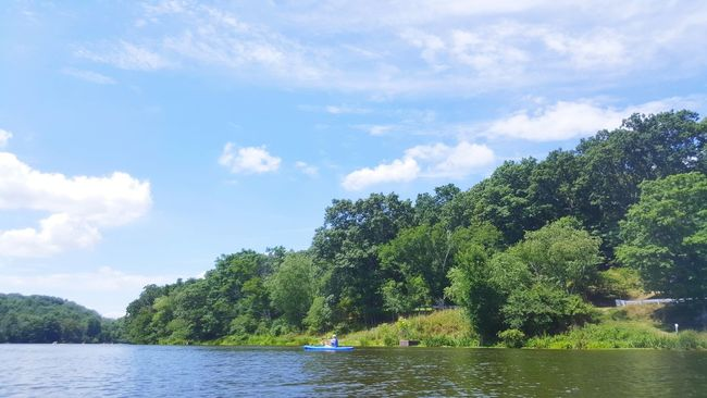 Lake Lake View Lake Life Park Water Nature Trees And Sky Trees Outdoors Outdoor Photography Park View Relaxing Summer IMography Mobile Photography Beautiful Day From My Perspective Leisure Activity A Day At The Lake Nice Weather Nice Day Lifestyles Sport Kayaking Kayaker