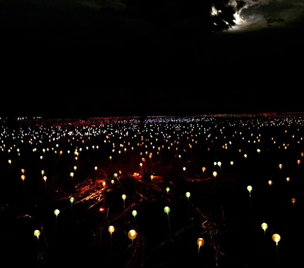 Night Lights Illuminated Exhibition Australia First Eyeem Photo Fieldoflights Ulurukatatjutanationalpark Tranquility