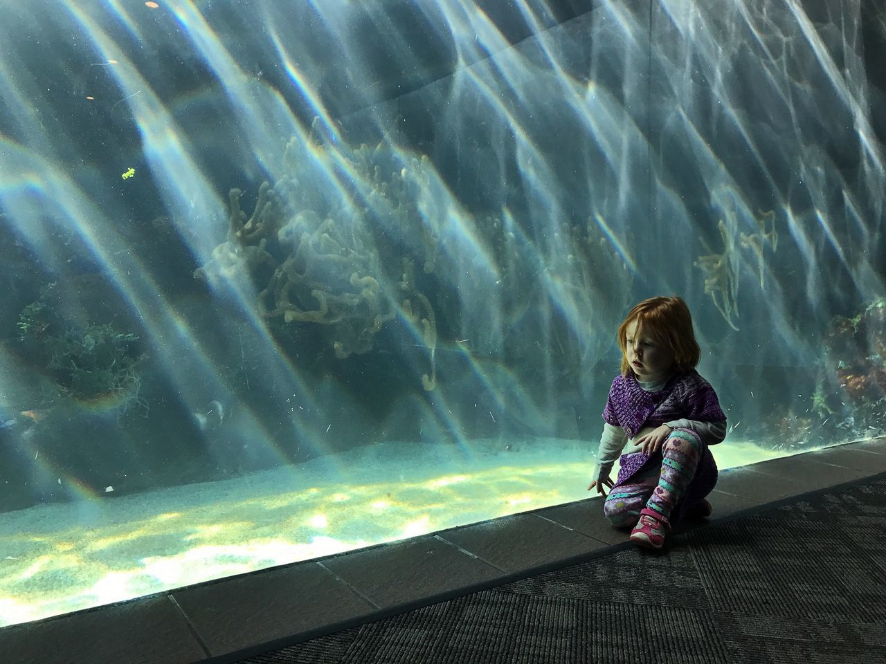Deep, thoughts Bermuda Aquarium Fishes Daddy Daughter Time Redhead Childhood Child Children Only One Person Casual Clothing Sitting Full Length People Nature Day Outdoors