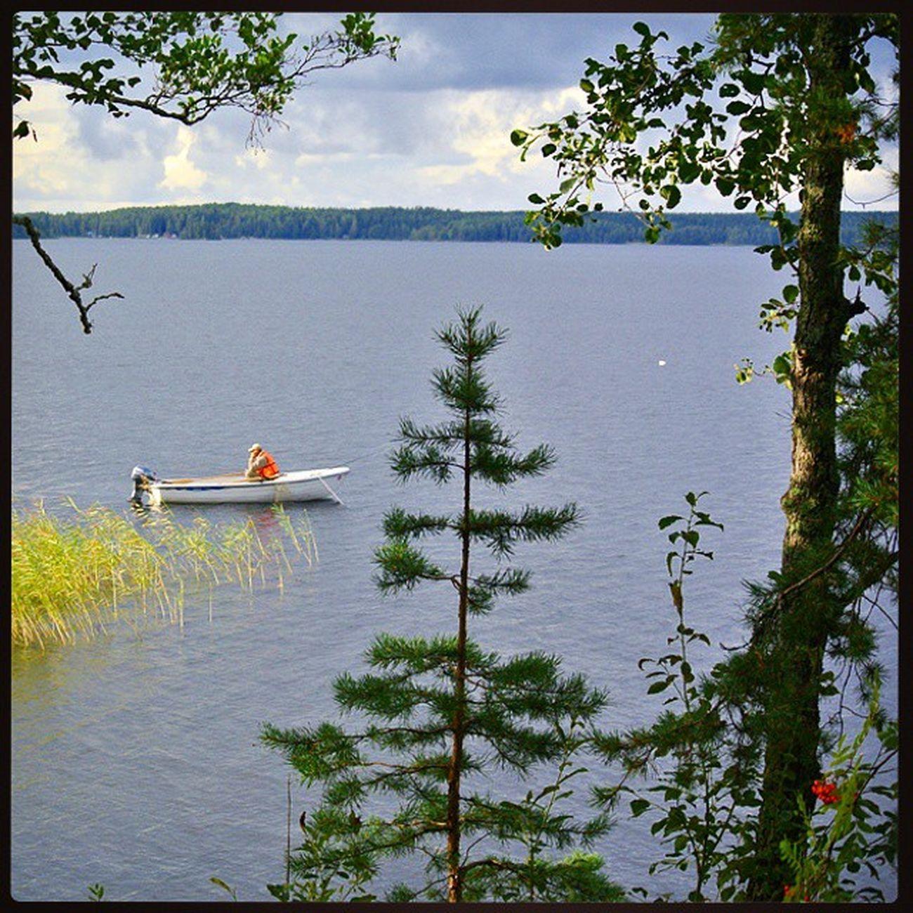 Saimaa Finland Fishing Lake nature relax summer trees Финляндия Саймаа рыбак рыбалка озеро лодка лето Suomi природа деревья отдых красота