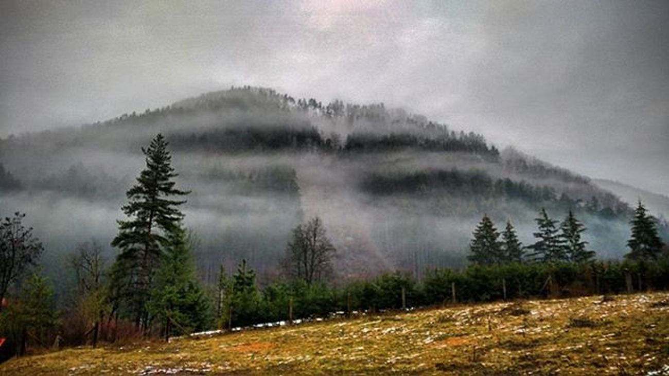 Fog Slovakia Slovaknature Mobilephoto Slovakiabeauty Naturebeauty Naturelovers Insta_svk Instalike Thisisslovakia Panorama Sky Trip Picoftheday Instashot HDR Ig_slovakia Foggy Trees Priroda Colors Instapic Ig_europe Exclusive_shot Naturegram exklusive_shot ilovenature