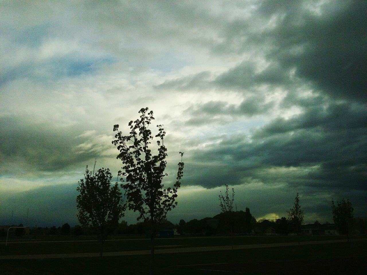 tree, sky, cloud - sky, nature, landscape, no people, field, tranquility, beauty in nature, growth, silhouette, scenics, outdoors, day, storm cloud