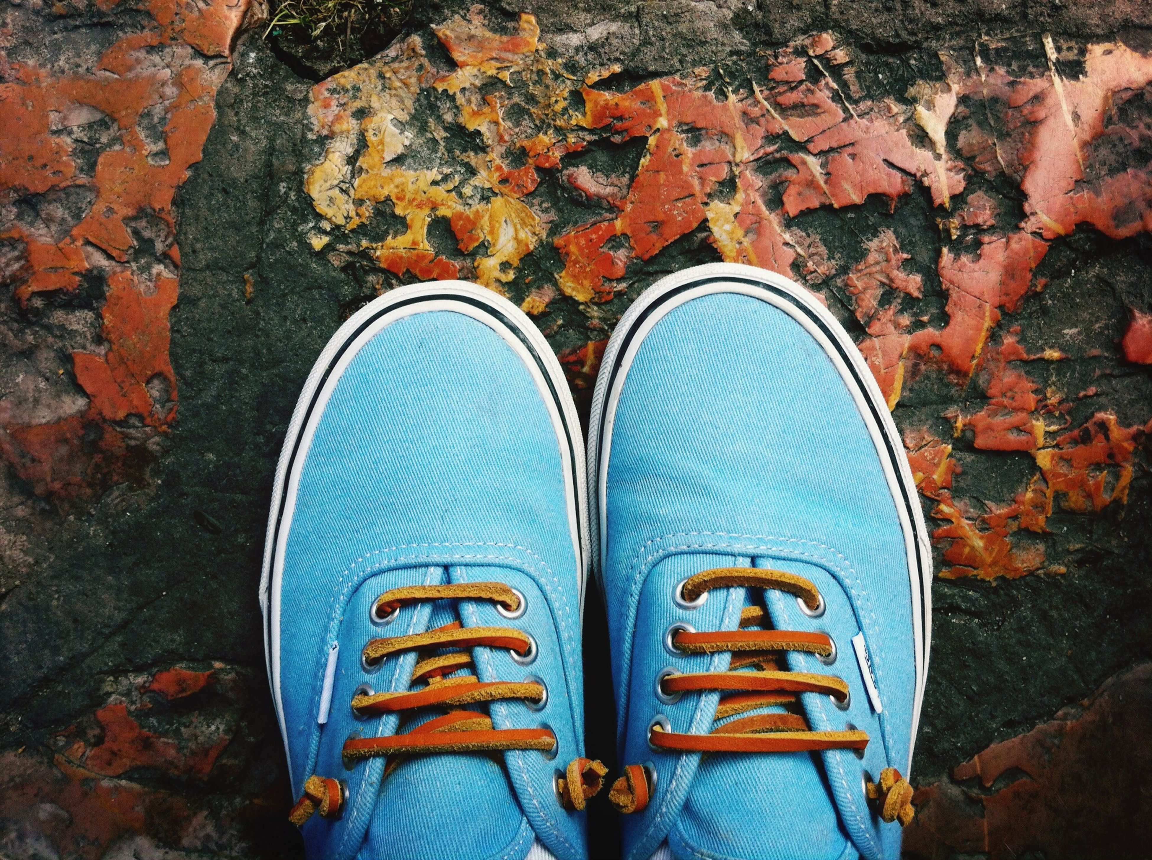 shoe, low section, person, blue, footwear, personal perspective, standing, close-up, outdoors, high angle view, day, multi colored, jeans, directly above, autumn, part of, wood - material