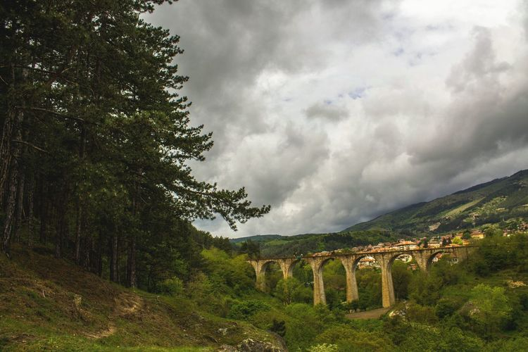 Train Bridge Forest Cityscapes Tree Nature Cloud - Sky Rain Green Color Lush - Description Growth Landscape Beauty In Nature Sky Grass War Outdoors Rural Scene Scenics No People Day Bulgaria Klisura,BG Bulgarian Nature