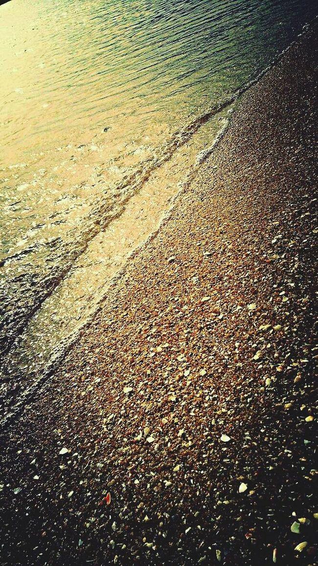 春の海へ。夕暮れ時にパシャリ。波の音と貝殻。 Sea Side Enjoying Life Trip Photo Hyogo,japan