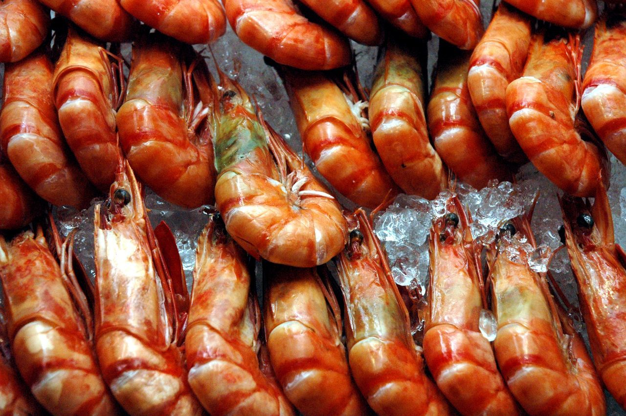 Backgrounds Close-up Day Food Food And Drink For Sale Freshness Full Frame Healthy Eating Large Group Of Objects Market No People Outdoors Seafood Shrimps