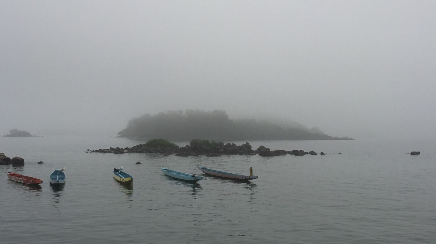 A grey hazy rainy afternoon in Saikung Taking Photos Outdoors