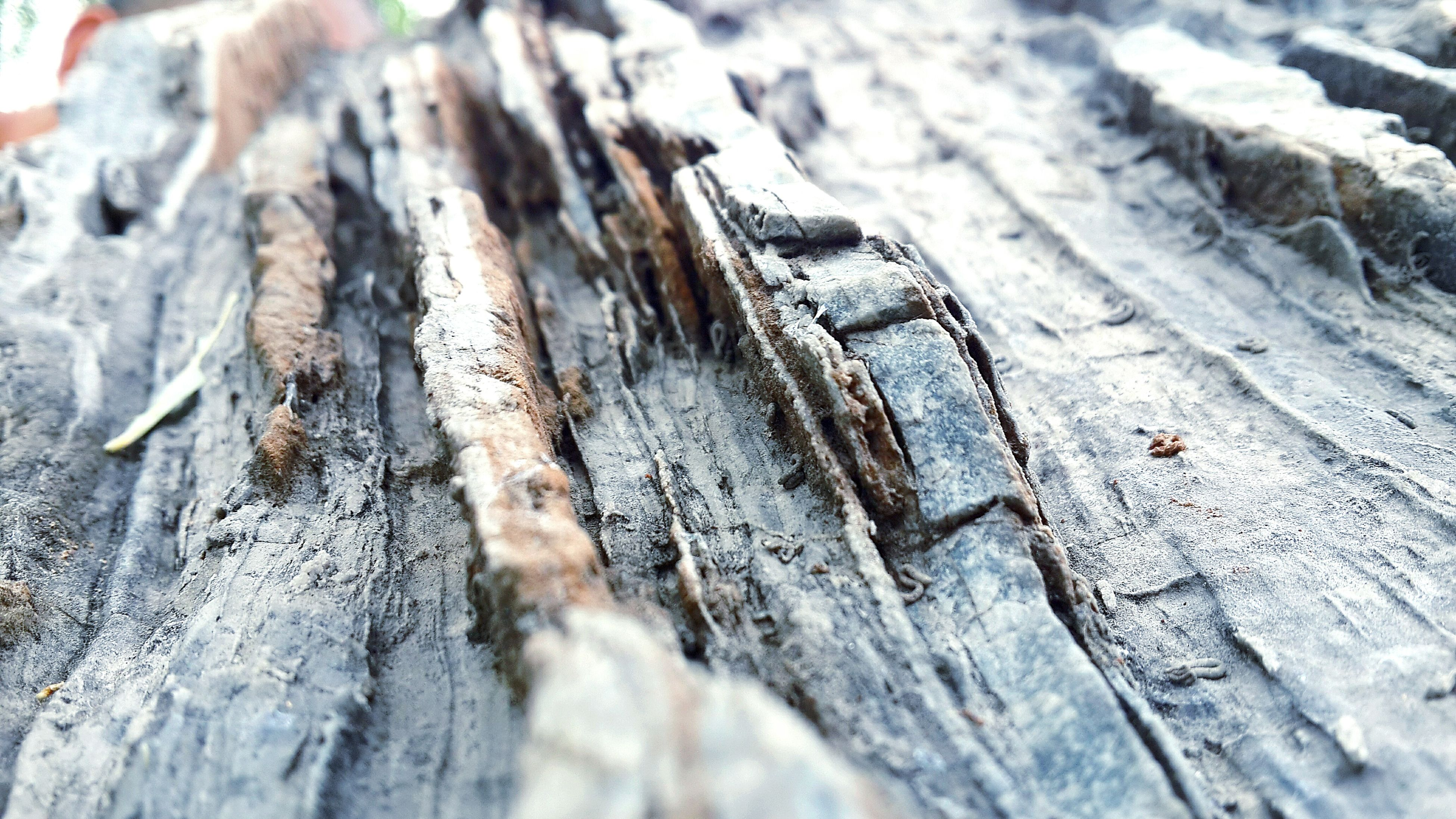 wood - material, wooden, wood, textured, selective focus, close-up, rough, plank, high angle view, weathered, nature, day, outdoors, no people, focus on foreground, log, damaged, tree trunk, surface level, boardwalk