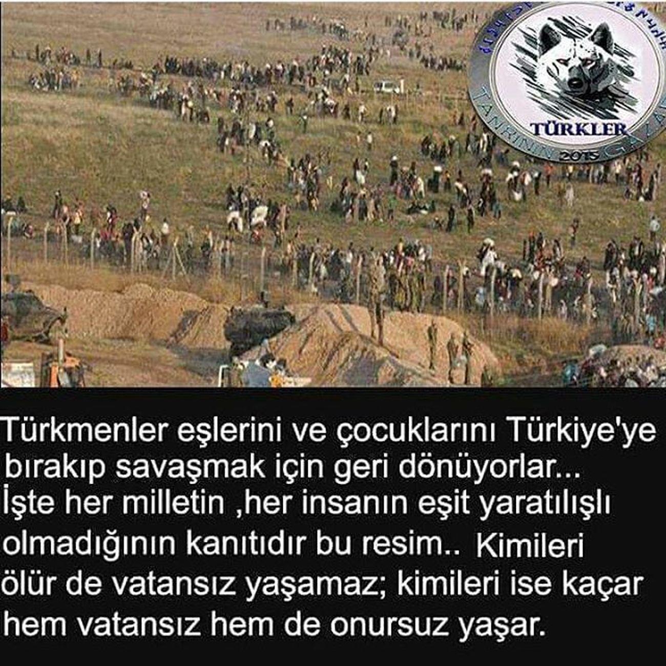 Allah Turku Korusun Onurlu Kardeslerim Allah Yanınızda Zafer Sizindir Turkmen Bayırbucak Türkmendağı